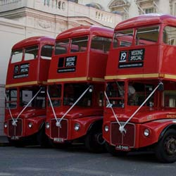 Our Own Buses